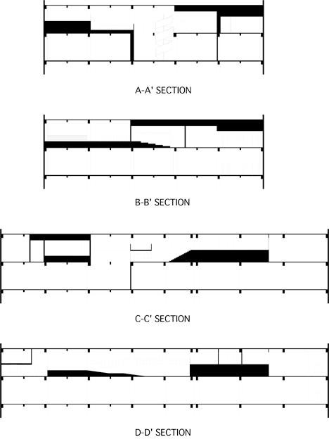 dashin-29-section