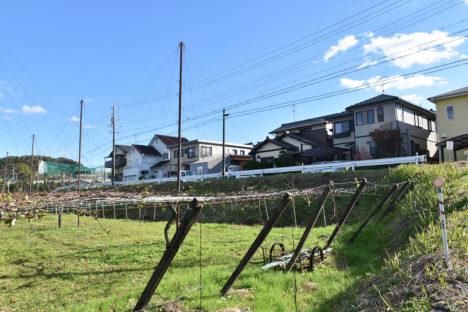 maru-okazaki03_enkei