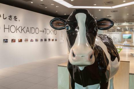 milkland010