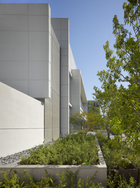 17_coe_aqua_east-facade-detail_roland-hable-photo-copyright
